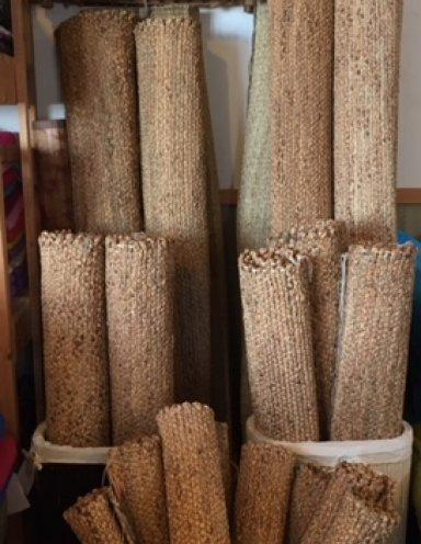 שטיחי עשב ים